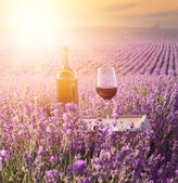 Bottle of wine. — Stock Photo