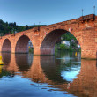 Old bridge on Neckar river in Heidelberg — Stock Photo