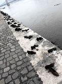 Skor på donau-promenaden — Stockfoto