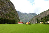 Countryside view near flam, norway — Stock Photo