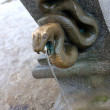 Stock Photo: Snake hot spring outlet