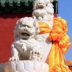 Chinese stenen leeuwen in een lijn — Stockfoto