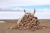 Prayer stones in Tibet — Stock Photo