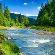 Mountain fast river — Stock Photo #23575269