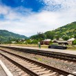 Stock Photo: Railroad in mountains