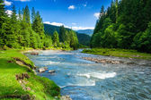 Mountain river — Foto Stock