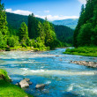 Mountain river — Stock Photo #24031423