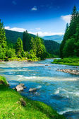 Mountain river — Stockfoto