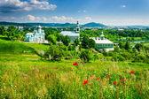 赤いケシの花と緑の修道院 — ストック写真