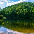 Clear lake in the mountains on summer weather — Stock Photo