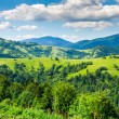 Agricultural land in the mountains — Stock Photo
