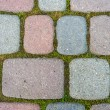 Moss  paving - Stock Photo