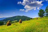 Další hory stoh sena se stromy — Stock fotografie