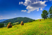 More Mountain Stack of hay with trees — Stock Photo