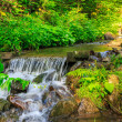 Forest stream splashes on rock cascade — Stock Photo #28398731