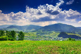 Meadow with trees and shrubs in mountains massif away in the bac — Foto Stock