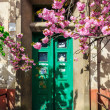 Sakura tree blooms  in front of door — Stock Photo