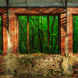 Forest behind the window frame of an abandoned hangar — Stock Photo