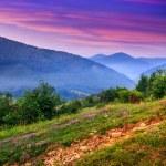 Standing on a hillside in morning fog — Stock Photo #29580485