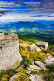 Sharp stones among the mountain meadows vertical landscape — Stock Photo