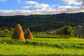 Pair of haystacks and treeat the foot of mountain — Stock Photo