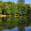 Lake reflections in city park vertical — Stock Photo #30236031