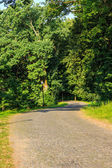 Winding path in city park vertical — Stock Photo