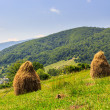 Haystacks on hillside near the village — Stock Photo