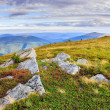 Stock Photo: Craggy rocks from grass on hillside