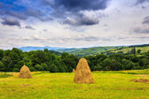 Haystacks in a field near the forest and mountain — Stock Photo