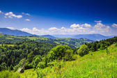 Mountain view from green meadow in summer — Stok fotoğraf
