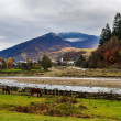 Horses by the rivers in Autumn mountain landscape — Stock Photo