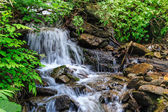 Small waterfall in forest shadow — Stock Photo