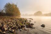 Yatay nehir çakıl plajı sisli sabah — Stok fotoğraf