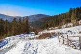 Yol kış orman dağları tarafından ahşap çit — Stok fotoğraf