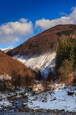 Fluxo entre montanhas nevadas com decídua e floresta de coníferas — Foto Stock