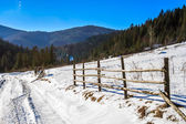 çit yakınındaki ormanda kış karlı dağın yamacında — Stok fotoğraf