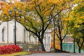 Höstens stadsbilden efter regn, med gulnade träden och gatan lampa — Stockfoto