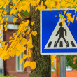 Road sign crosswalk in yellow leaves — Stock Photo #33501651