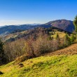 Conifer hillside near autumn forest on top of the mountain lands — Stock Photo #33817361