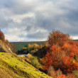 Stock Photo: Autumn hillside with red and yellow forest