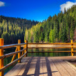 Pier on mountain Lake near  forest — Stock Photo
