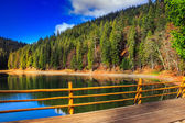 Fence on mountain Lake near forest — Stock Photo