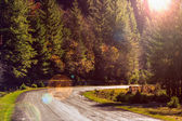 Mountain road near the coniferous forest with cloudy morning sky — Stock Photo