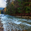 River flows by rocky shore near the autumn mountain forest — Stock Photo