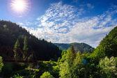 Puente metálico ferroviario en montañas — Foto de Stock