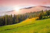 Kalter nebel auf heiße sonnenaufgang in bergen — Stockfoto