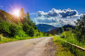 Mountain road near the coniferous forest with cloudy morning sky — Foto Stock