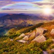 Light on stone mountain slope with forest — Stock Photo