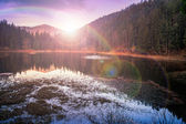 Autumn Mountain lake in coniferous forest — 图库照片